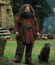 Hagrid1991