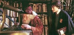Chamber-of-secrets-fawkes