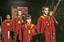 Gryffindor-quidditch