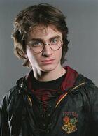 Harry Potter Toverschooltoernooi