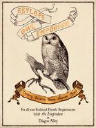MinaLima Store - Eeylops Owl Emporium - Poster
