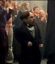 Professor-Flitwick-filius-flitwick-28226873-362-425