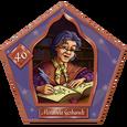 Miranda Goshawk-46-chocFrogCard