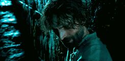 Order-of-the-phoenix-movie-screencaps.com-9446