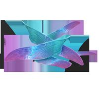 PM-Item FairyWings