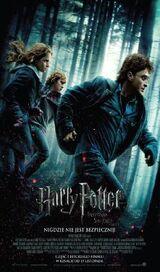 Harry Potter i Insygnia Śmierci: część pierwsza (film)