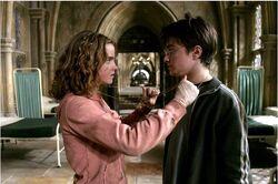 Harry og Hermine