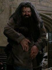 Гарри и Хагрид