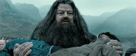 Hagrid carrying Harry