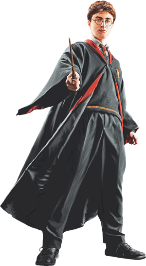 Harry in Robe with Wand Front View (Painting) - Harry Potter and the Half-Blood Prince™