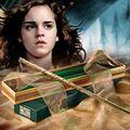 Hermione554.jpg