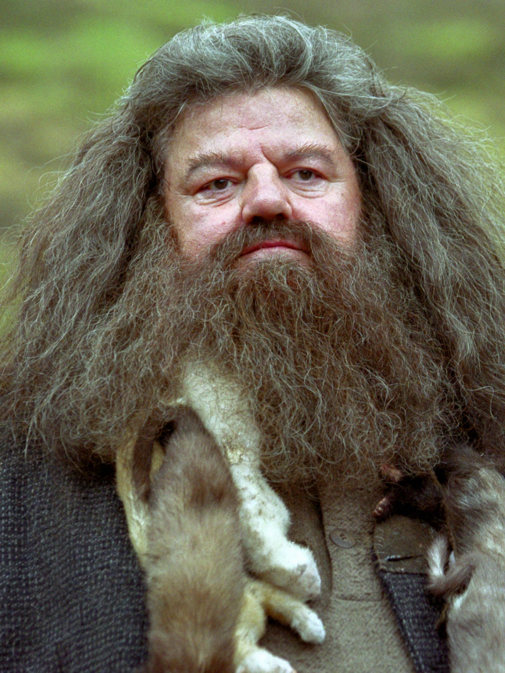 Rubeus Hagrid | Harry Potter Wiki | Fandom