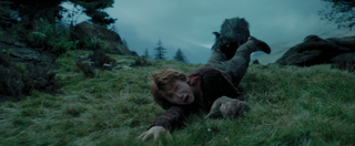 Sirius Black Attacking Ron