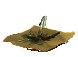 DragonflyThoraxes