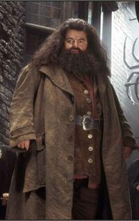 Hagrid dmbeldore