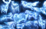 http://fc08.deviantart.net/fs71/i/2011/207/6/f/patronus_wallpaper_by_shoutthesecrets-d41pouf
