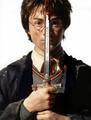 Sir Harry of Gryffindor.png