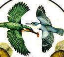 Halcyon (Logo8th)