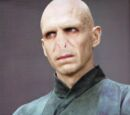 Lord Voldemort (Shadow North)