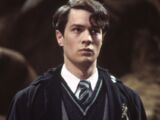 Tom Riddle (Lord Dumbledore)