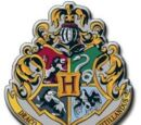 Hogwarts founders (Scopatore)