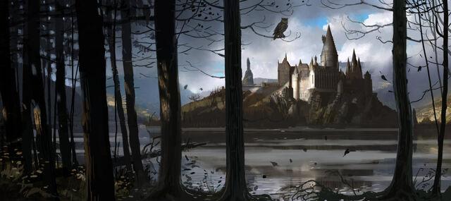 File:HogwartsCastle WB F4 HogwartsThroughTheTrees Illust 100615 Land.jpg