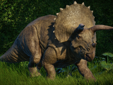 Triceratops (Lord Caesar)