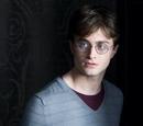 Harry Potter (MuggleInNet)