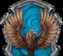 Ravenclaw Quidditchteam