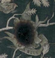 180px-Marius Black