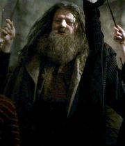 Hagrid12