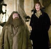 Hagrid9