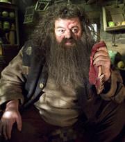 Hagrid10