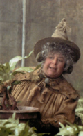 Professor Pomona Sprout teaching her Herbology class