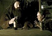 Hagrid11