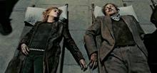 Remus Lupin & Nymphadora Tonks Deceased