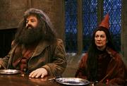 Hagrid and Vector
