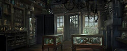 Borginandburkes pottermore