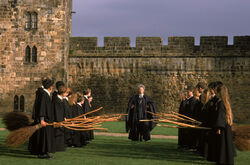 Flying lesson with Madam Hooch
