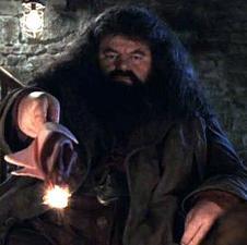 Hagrid15