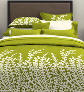 Green Bed 2
