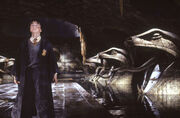 Harry In Chamber