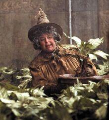 389633-harry-potter-harry-potter-pomona-sprout