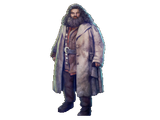 Rubeus Hagrid (Foundable)