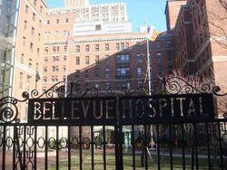 Bellevue1
