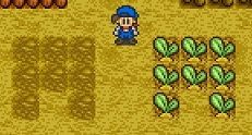 Planting 8tiles snes