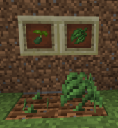 Spice Leaf