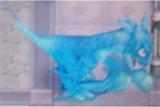 File:RF4 Blue Dragon.jpg