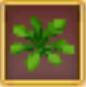 Weeds (RF4)