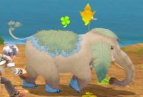 Elephantu